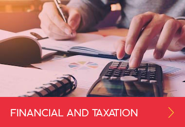 Financial and Taxation Services